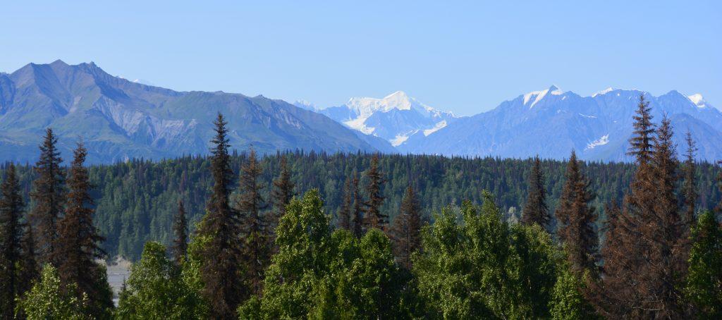 Denali National Park, Alaska Road Trip Stop