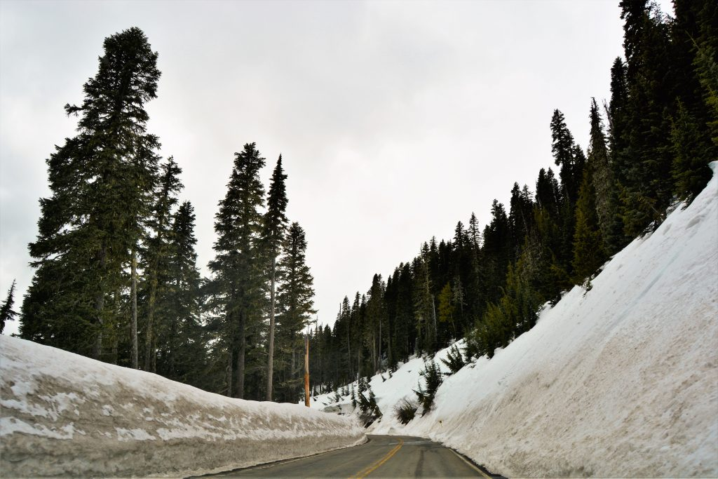 Driving Mount Rainer National Park