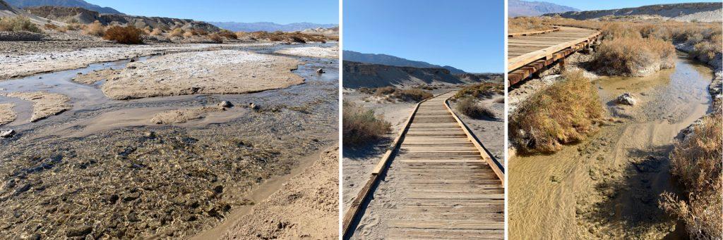 Salt Creek Interpretive Trail, Death Valley National Park