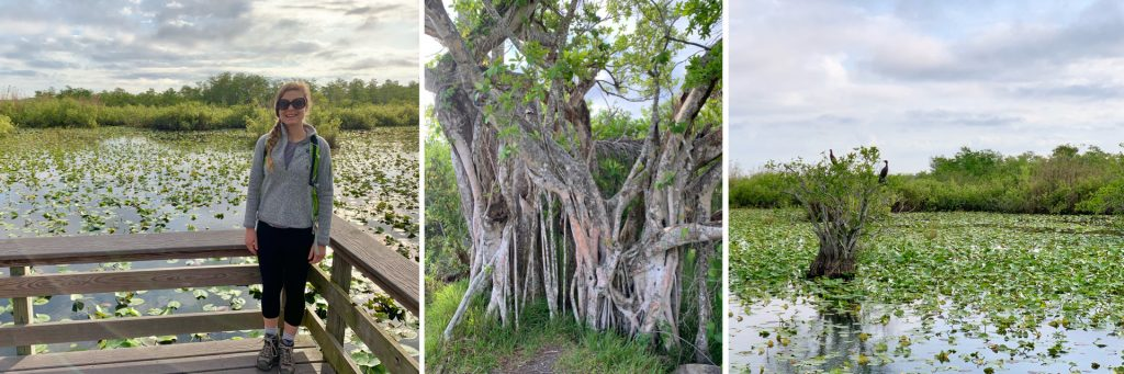 Hiking in Everglades National Park