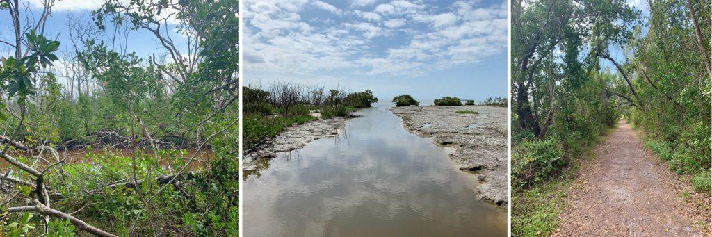 Snake Bight Trail, Everglades National Park