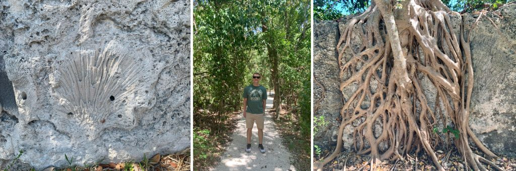 Windley Key Fossil Reef Geological State Park